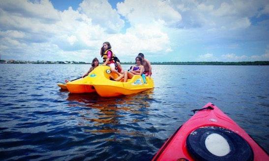 Kayak Rentals On Fred Howard Park