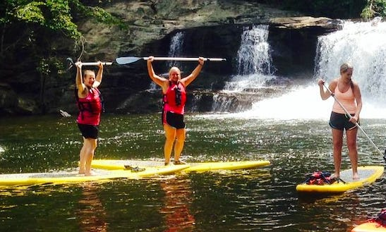 Paddle Board Rental In Pisgah Forest