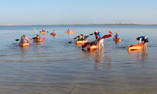 Kayak Rental At Dauphin Island, Alabama