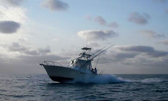 Charter Fishing Boat  'snow Pirate' In Ohio