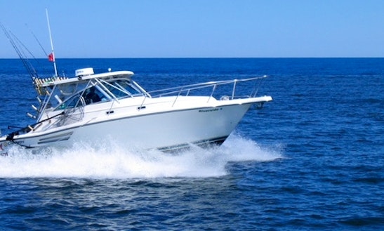 Manistee Fishing Charter On 34' Tiara Pursuit Sporfishing Yacht