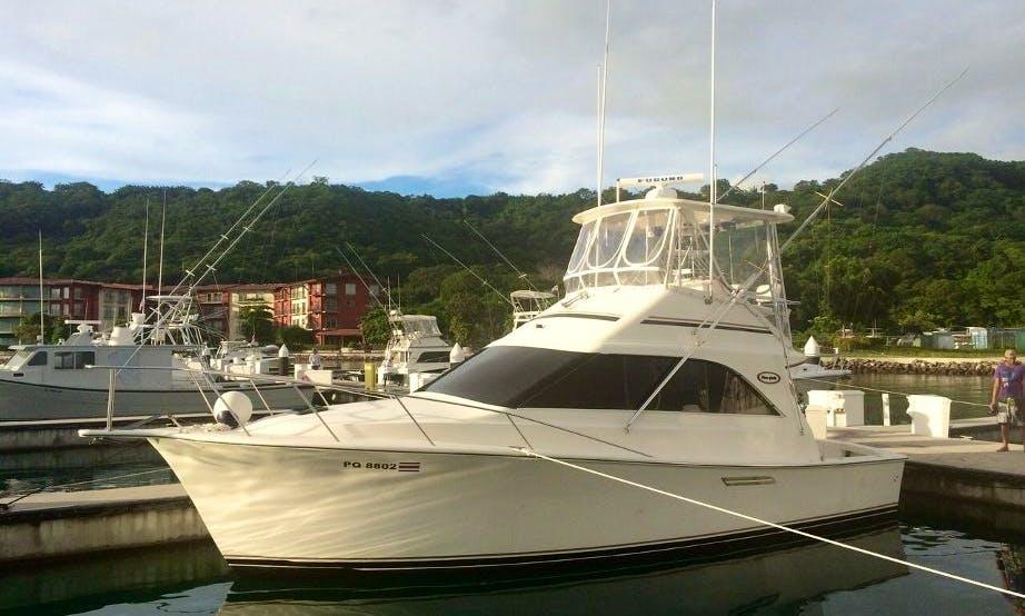 Full/Half Day Yacht Charter in Costa Rica