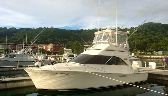Full/half Day Yacht Charter In Costa Rica