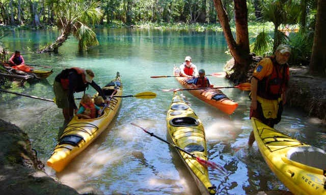 Guided Kayak Tour In Silver Springs