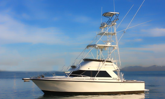 Fishing Charter On 34ft