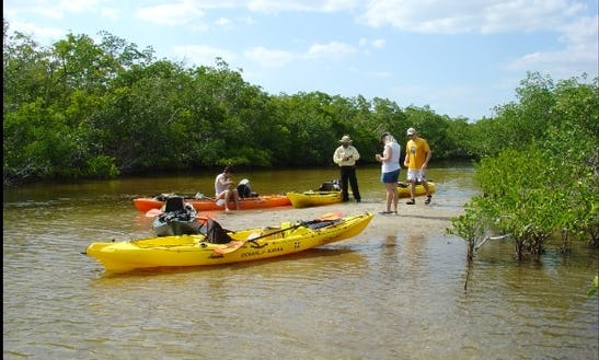 Kayak Fishing Charter In Cape Coral