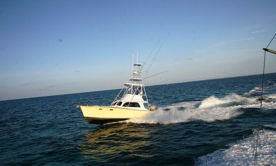 Sport Fishing Charter On The 37ft
