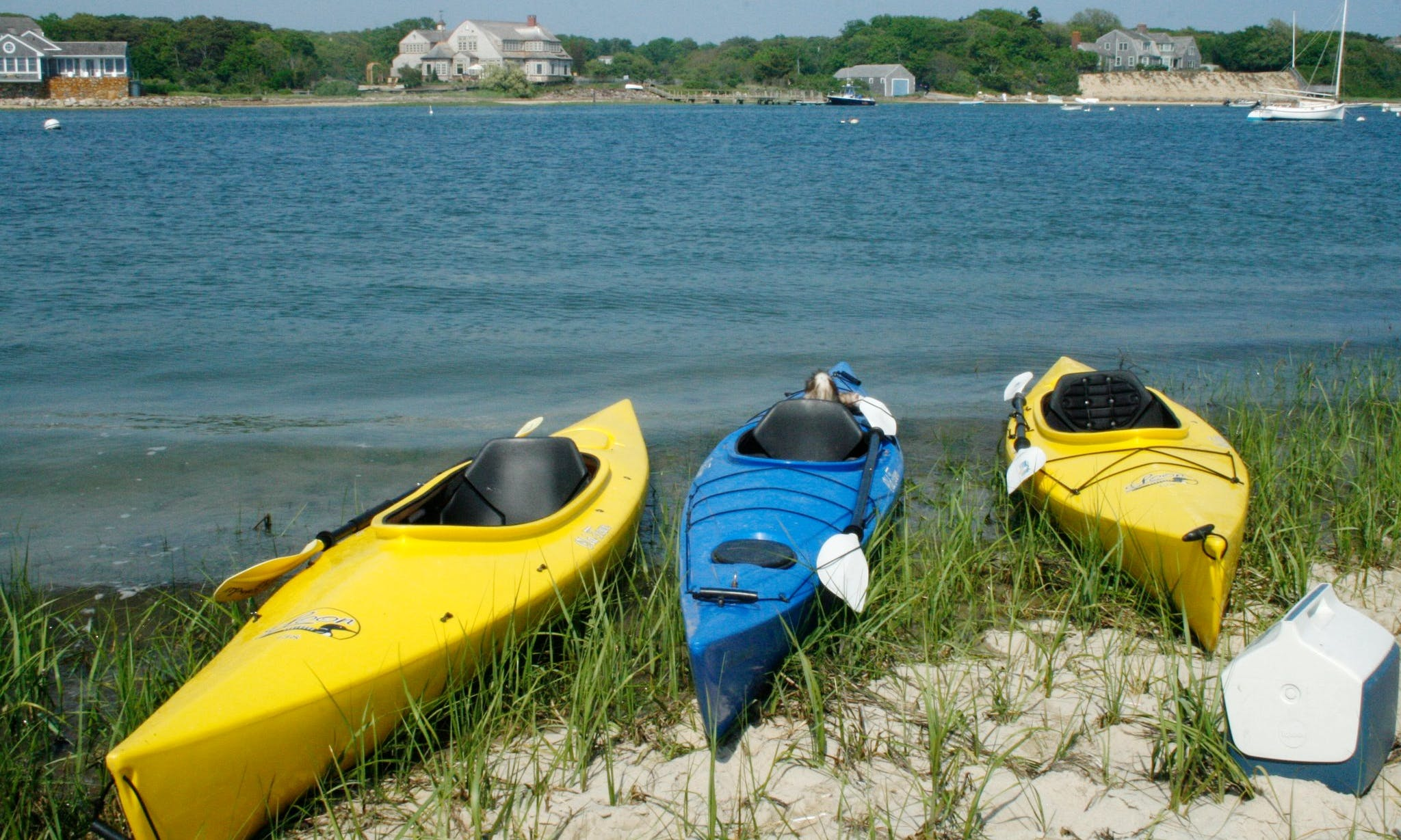 Fantastic Kayaking Trip on Oyster River in Chatham, Massachusetts