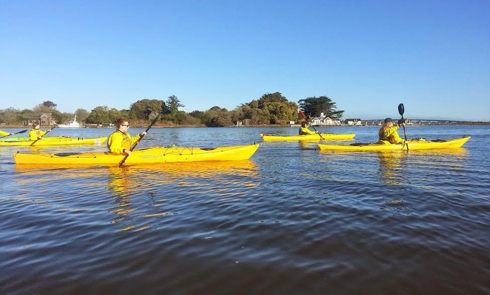 Kayak and SUP Tours in Eureka, CA