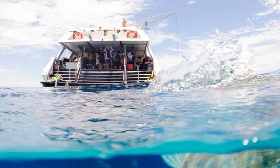Passenger Boat Rental In Parramatta Park