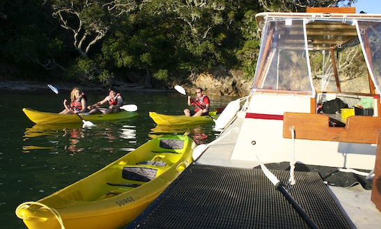 Cruise And Kayaking In The Bay Of Islands From $48.00 Per Person