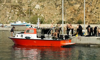 Boat Trips and Taxi Boat (20 pax)