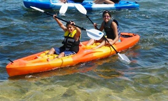 Double Kayak Daily Rental In Islamorada, Florida