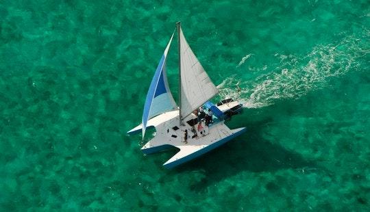 Newick 36' Trimaran Cruising Catamaran Rental In George Town, Cayman Islands