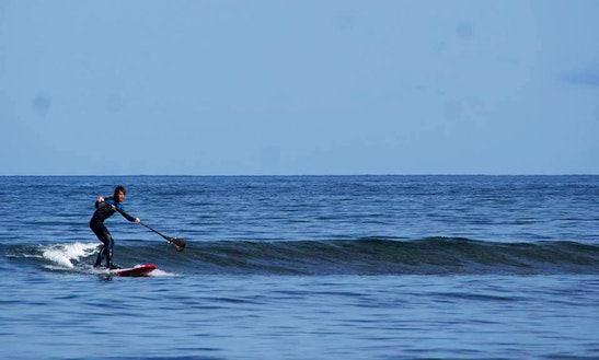 Stand Up Paddleboard Rentals And Lessons In Vineyard Haven, Ma
