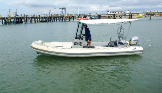 Survey Excursions Aboard The 20' Antares Rib Charter In Townsville City, Australia