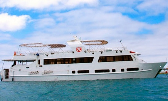 Humbolt Yatch Diving Cruise In Islas Galápagos