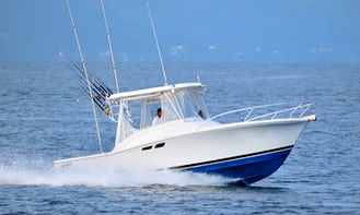 Fishing Boat Luhrs 25 in Puerto Vallarta