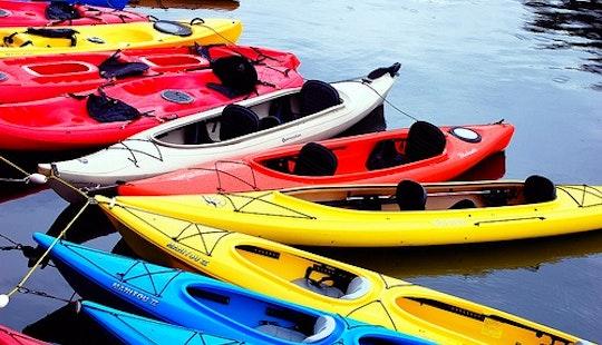 Kayak Rentals In Chatham