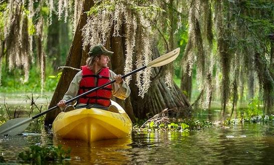 Acadiana Kayak Tours & Rentals