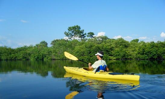 Rent Single Kayaks In Bradenton