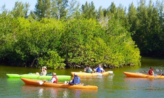 Rent Double Kayaks In Bradenton