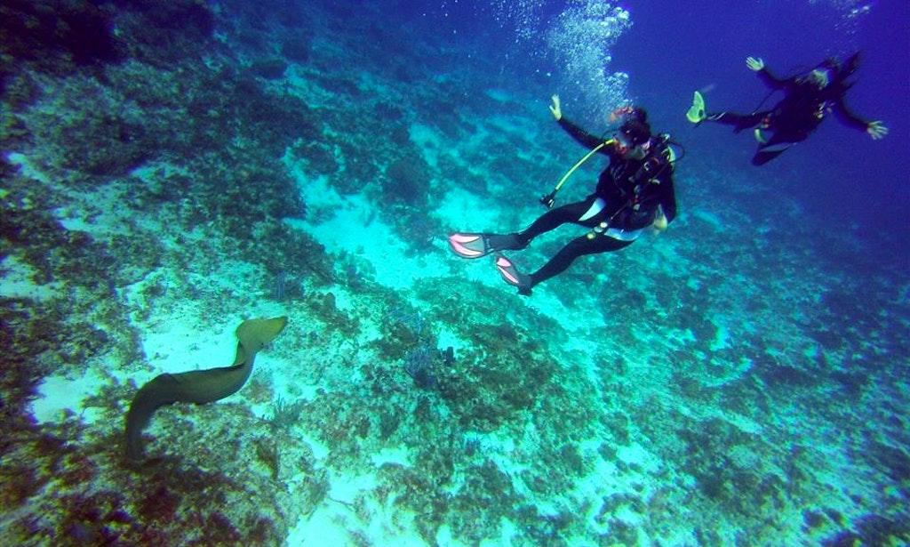 More 90ft Aluminium Dive Vessel Images
