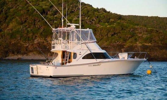 Charter Assegai 44 Levante Yacht In Australia