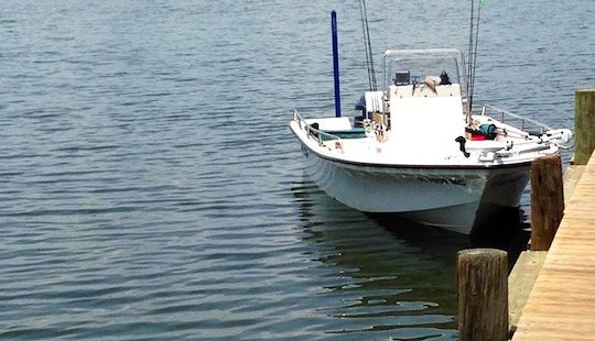 Rent 19' Sea Pro Bay Boat In Tampa, Florida
