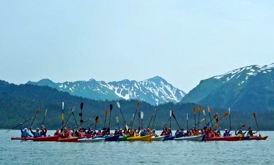 Kayak & Sup Tours In Homer, Alaska