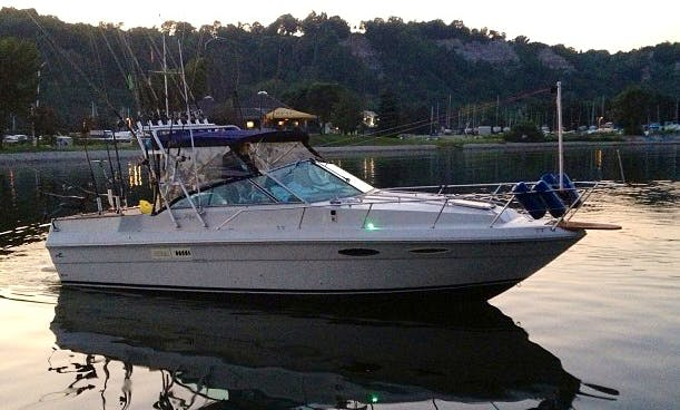 30' Sea Ray Fishing Boat In Toronto