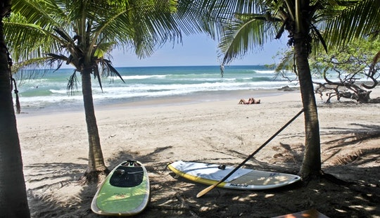 Paddle Boards In Tamarindo Beach Costa Rica