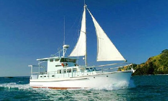 Luxury ''mv Mazurka'' Charter In New Zealand