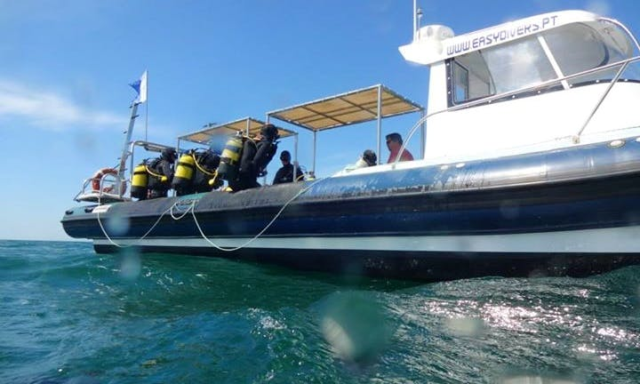 Head Boat Diving Charter in Albufeira, Portugal