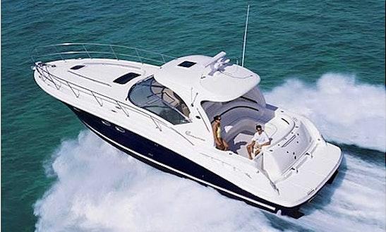 Charter 42' Motor Yacht Sea Ray Sundancer In Dubai, Uae