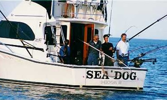 35ft nicky boy sport fisherman boat charter in port for Wisconsin fishing resorts with boat rentals