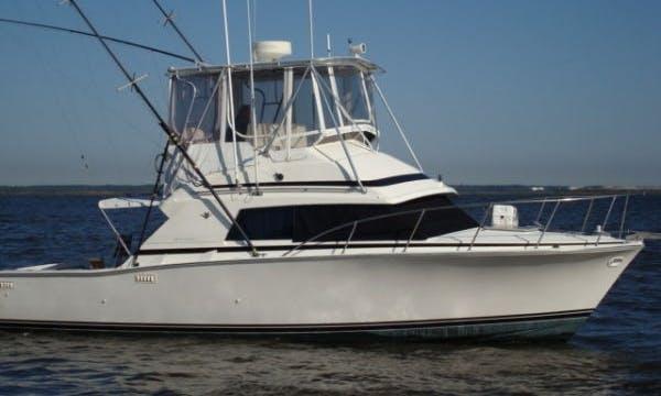 46ft Sport Fisherman Boat Charter in Montauk, New York