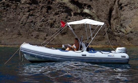 18' Rigid Inflatable Boat Rental In Bosa