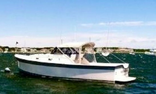 27' Luhrs Fishing, Diving, Sightseeing Charter
