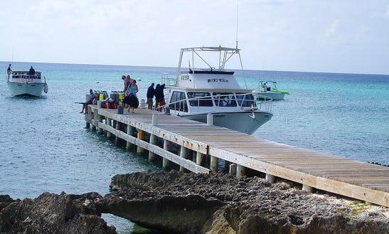 Dive Boat In Las Rozas