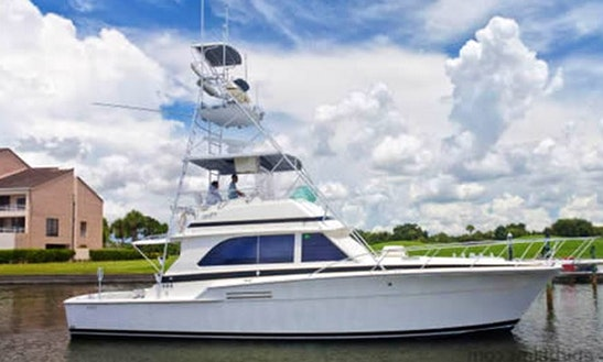 46' Bertram Sportfishing Charter Cancun, Mexico