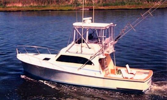 Enjoy Fishing On Sport Fisherman Yacht In Beach Haven, New Jersey