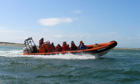 Hire A 33' For Powerboat Ride In Brighton  England