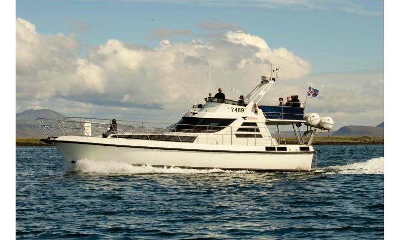 Elding II | 48ft Luxury Motor Yacht