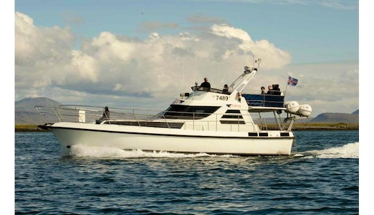 Elding Ii | 48ft Luxury Motor Yacht