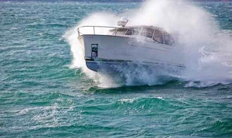 Greenline 33 Hybrid Motor Yacht Rental in Hamburg