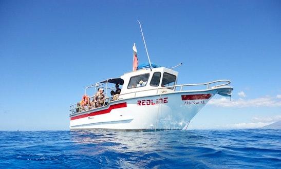 Snorkeling Tour Boat In Kehei