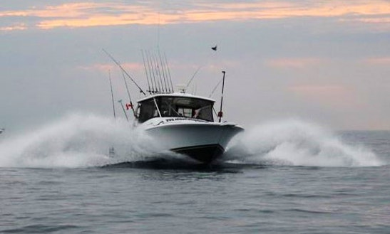 Charter Luhrs 29 Fishing Yacht In Ontario