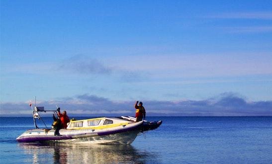 30' Rib Boat