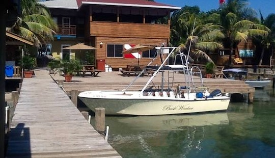 28' Center Console Dive Boat In Honduras